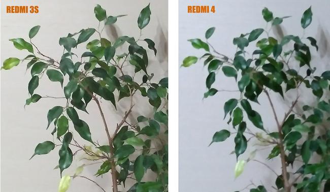 сравнение камеры Redmi 4 и Redmi 3S